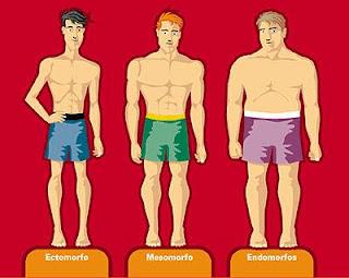 Mesomorfo, endomorfo ou ectomorfo: Qual o seu tipo?
