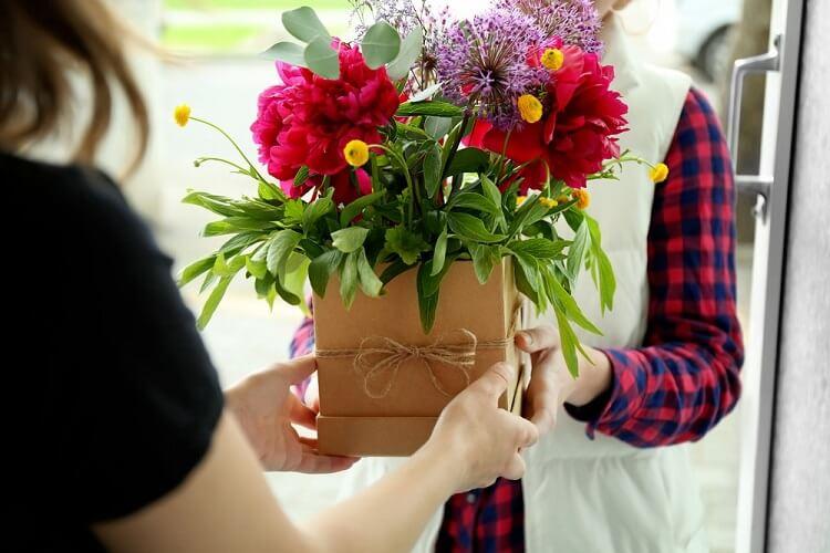 Resultado de imagem para presente flores plantadas